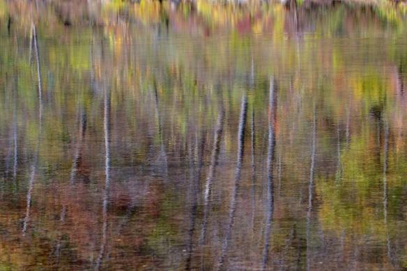 Buffalo National River  024