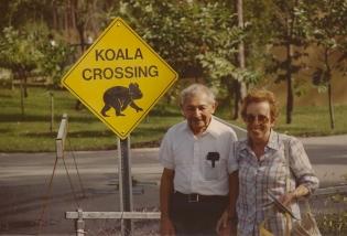 koala  001