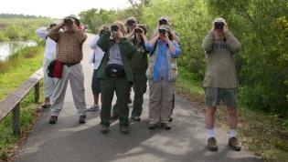birders  006