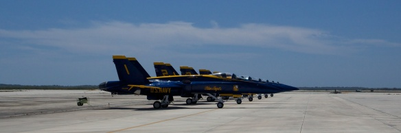 The Blue Angels fly the Boeing F/A 18 Super Hornet