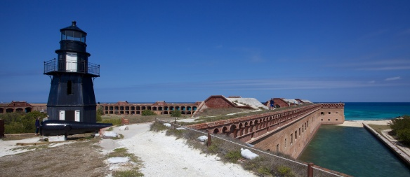 dry tortugas np  038