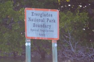 everglades city  056