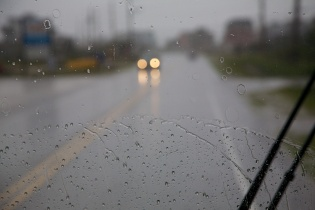 rain  113