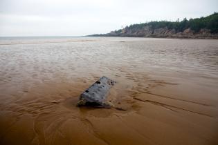 New Brunswick87