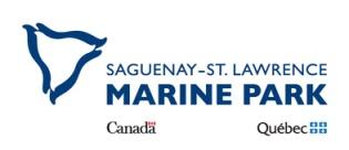 saguenay logo