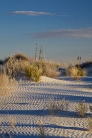 white sands  018