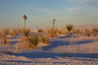 white sands  023