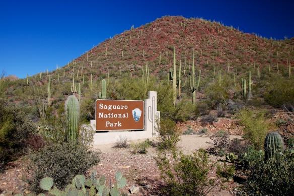 Tucson  027